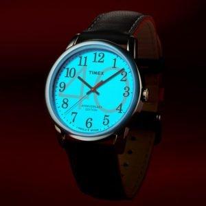 Часы Timex Tx2r40000_photo