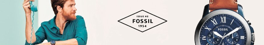 Часы Fossil fossil-longbanner